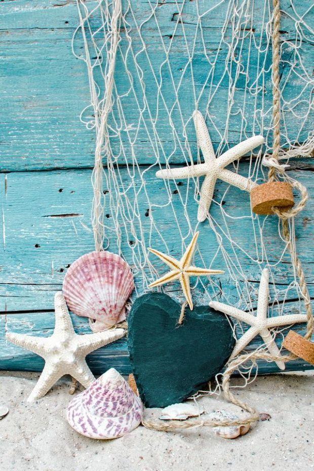 seashells1.jpg