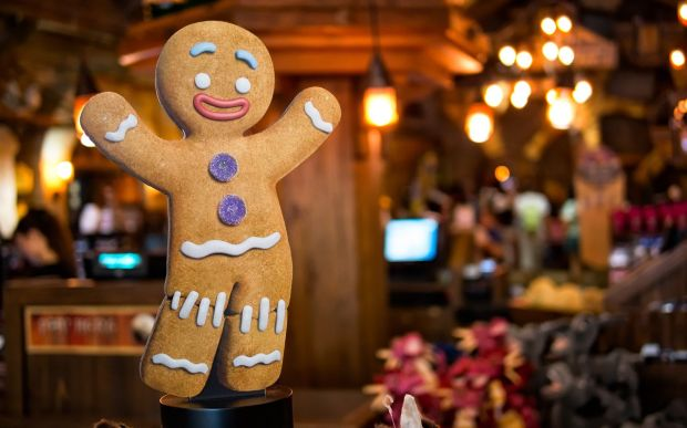 7011542-gingerbread-man-biscuit-cookie-christmas.jpg