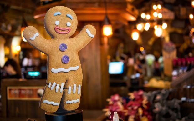 7011542-gingerbread-man-biscuit-cookie-christmas.jpg