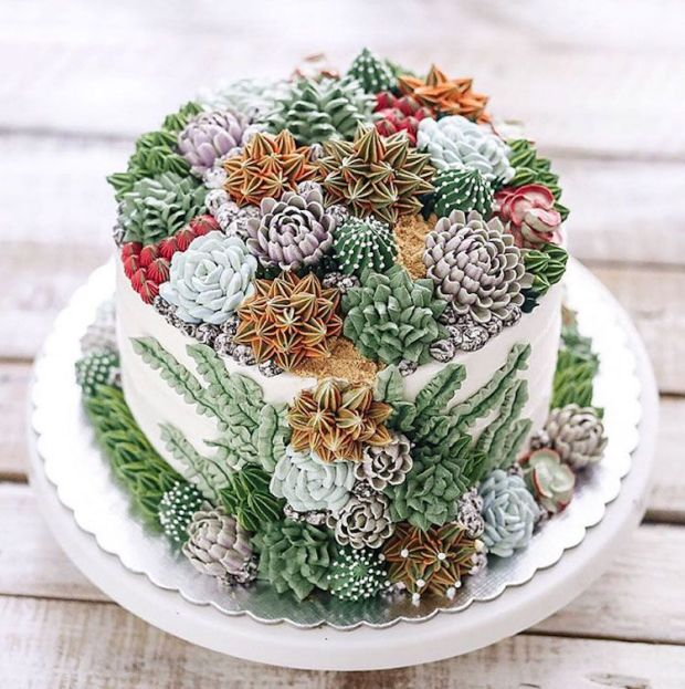 ivenoven-succulent-cakes-3.jpg