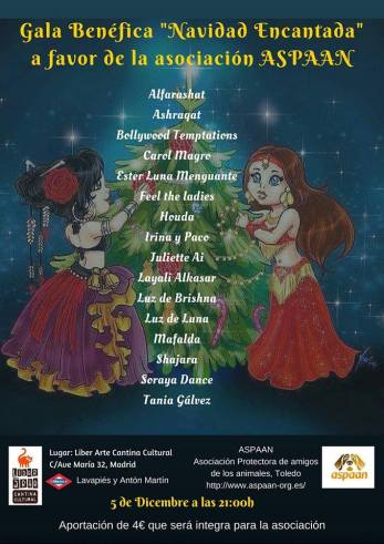 Gala Benéfica Navidad Encantada