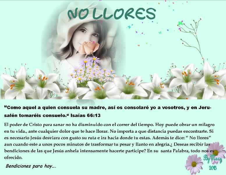 JARDINES PARA EL ALMA. (3/6)