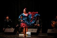 FESTIVAL FLAMENCO LAS MINAS ALDEA MORET 2015IMG_0098 291115 Luz&Raia