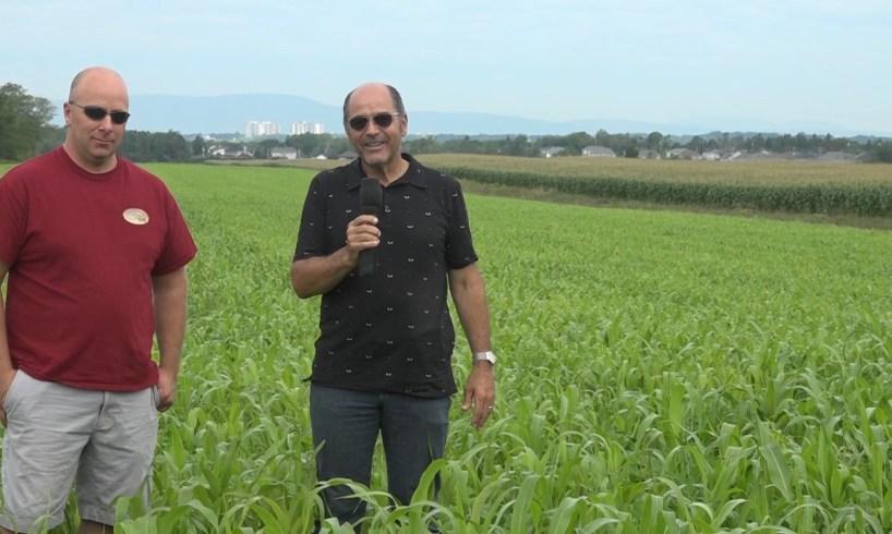 Gaétan Poulin, ferme Luga, et Guy Forand, Belisle nutrition animal