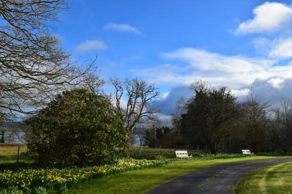 Castle Grove Garden © Lavender's Blue Stuart Blakley