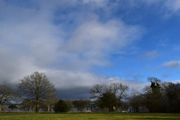 Castle Grove Ramelton © Lavender's Blue Stuart Blakley