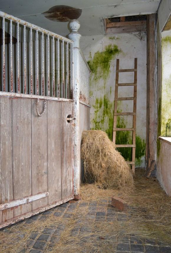 Crevenagh House Stables © Lavender's Blue Stuart Blakley