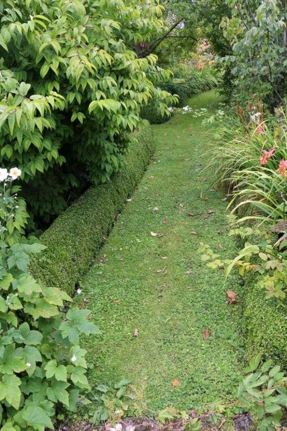 7 Salthill Gardens Donegal © Lavender's Blue Stuart Blakley