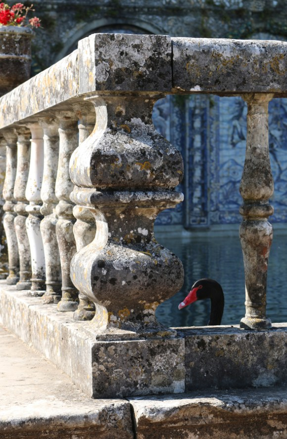 Fronteira Palace Balustrade Lisbon © Lavender's Blue Stuart Blakley