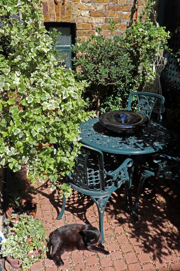 lavender's blue courtyard © lavender's blue stuart blakley