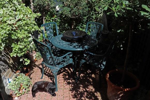 lavender's blue courtyard zelda © lavender's blue stuart blakley