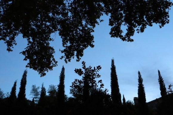 Provence Twilight © Lavender's Blue Stuart Blakley