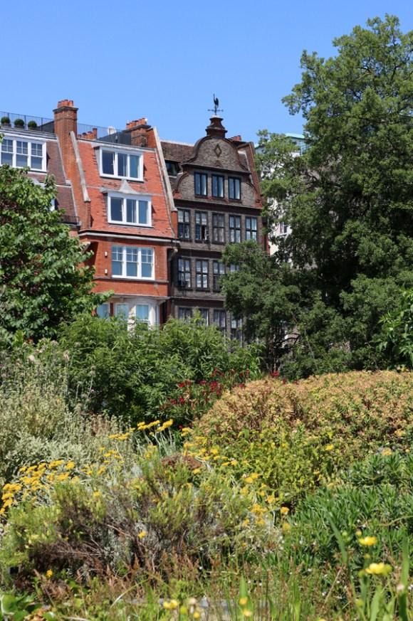 Chelsea Physic Garden London View © Lavender's Blue Stuart Blakley