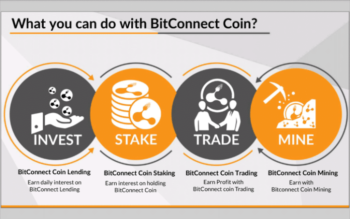 Bitconnect What is Infographic
