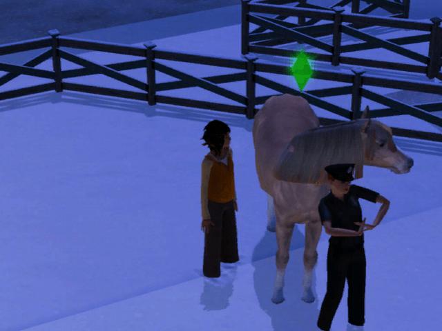 Busted on horseback!