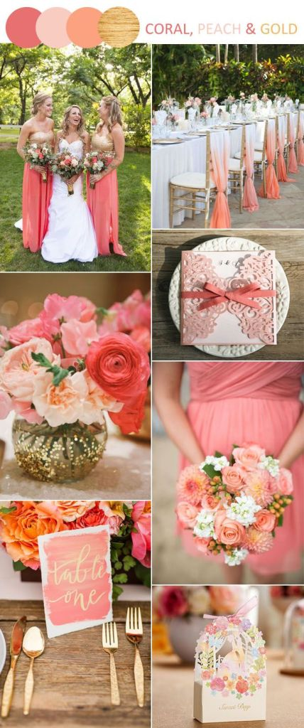 Coral Colour Palette