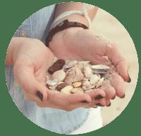 Sea shell treasure in hands.