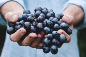 Hands holding grapes out to you.
