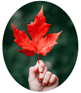 Red leaf - a reminder that death is not as ugly as we think.