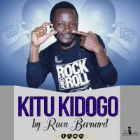RAOU BERNARD KITU KIDOGO www lwimbo com  mp3 image Raou Bernard - Kitu Kidogo