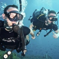 Diving in Koh Tao: which school to choose?