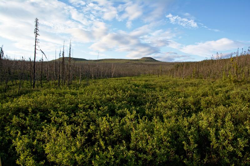Table Top Mountain - White Mountain National Recreation Area