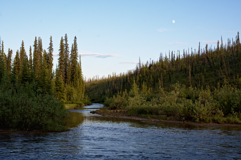 Nome and Ophir Creeks in the White Mountain National Recreation Area