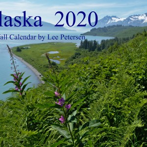 front cover of 2020 wall calendar by Lee Petersen