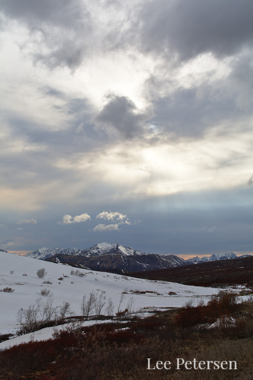Sky over Sable Pass in Denali National Park