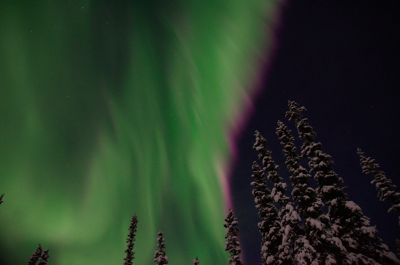 Crimson and green aurora overhead