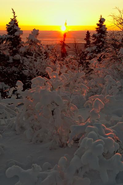 The sun breaks the horizon - beautiful golden light on the snow