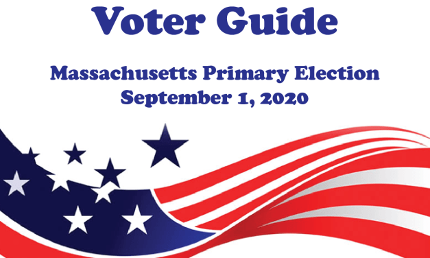 Voter Guide to the Primary Candidates