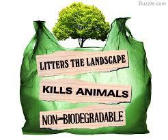 bag_it-litter-campaign