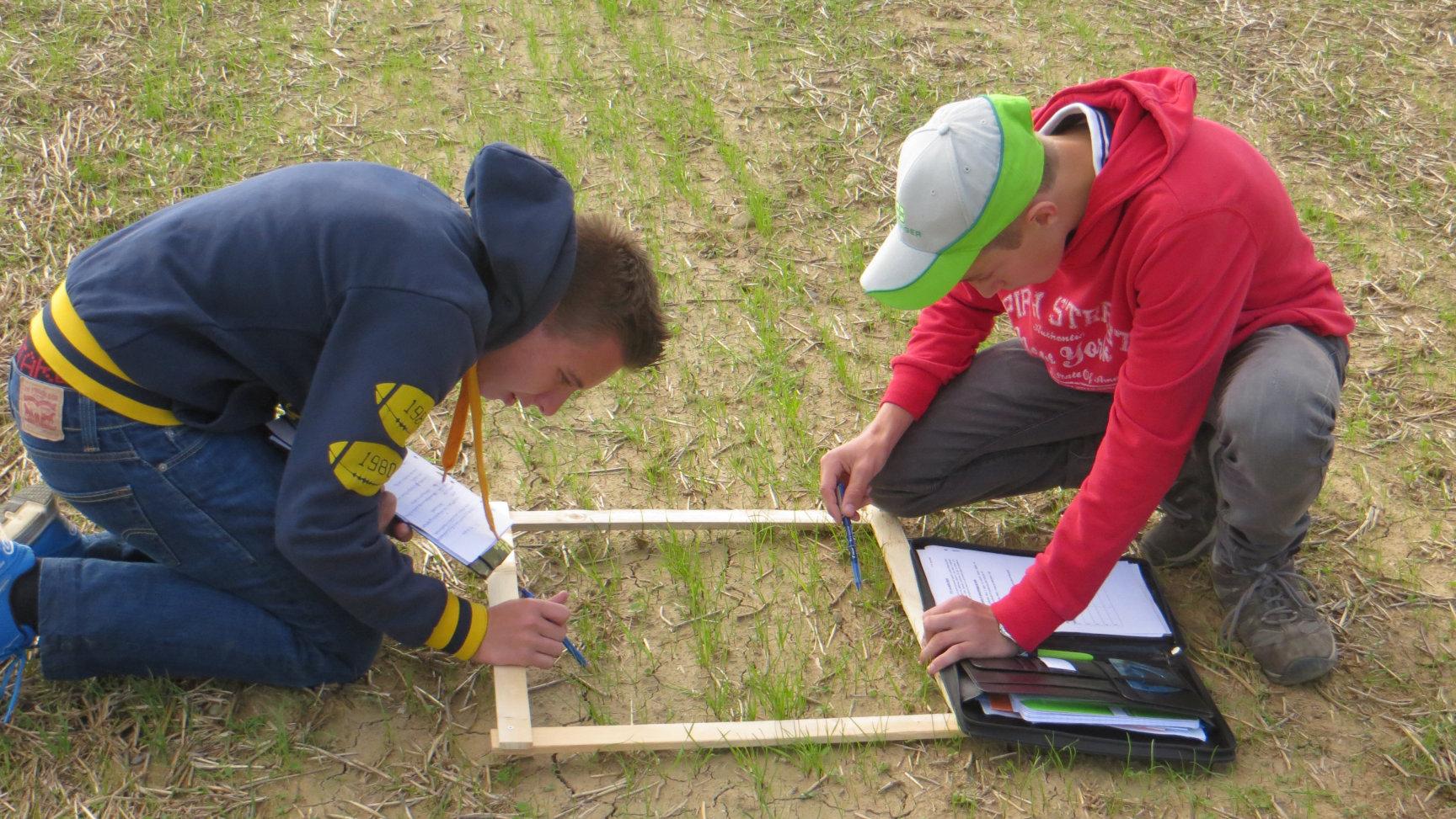 Travaux pratiques sur notre exploitation agricole