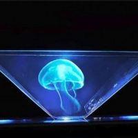 Capture-hologramme-5.JPG
