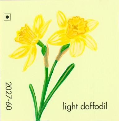 light daffodil653