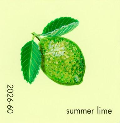 summer lime646
