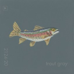 trout gray