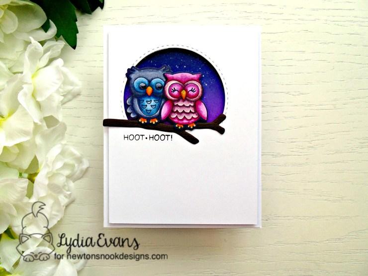 newtons nook owls_1