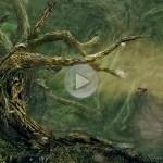 'Everyday' Day 10 – Hitfilm Rigging Practice (Tree)