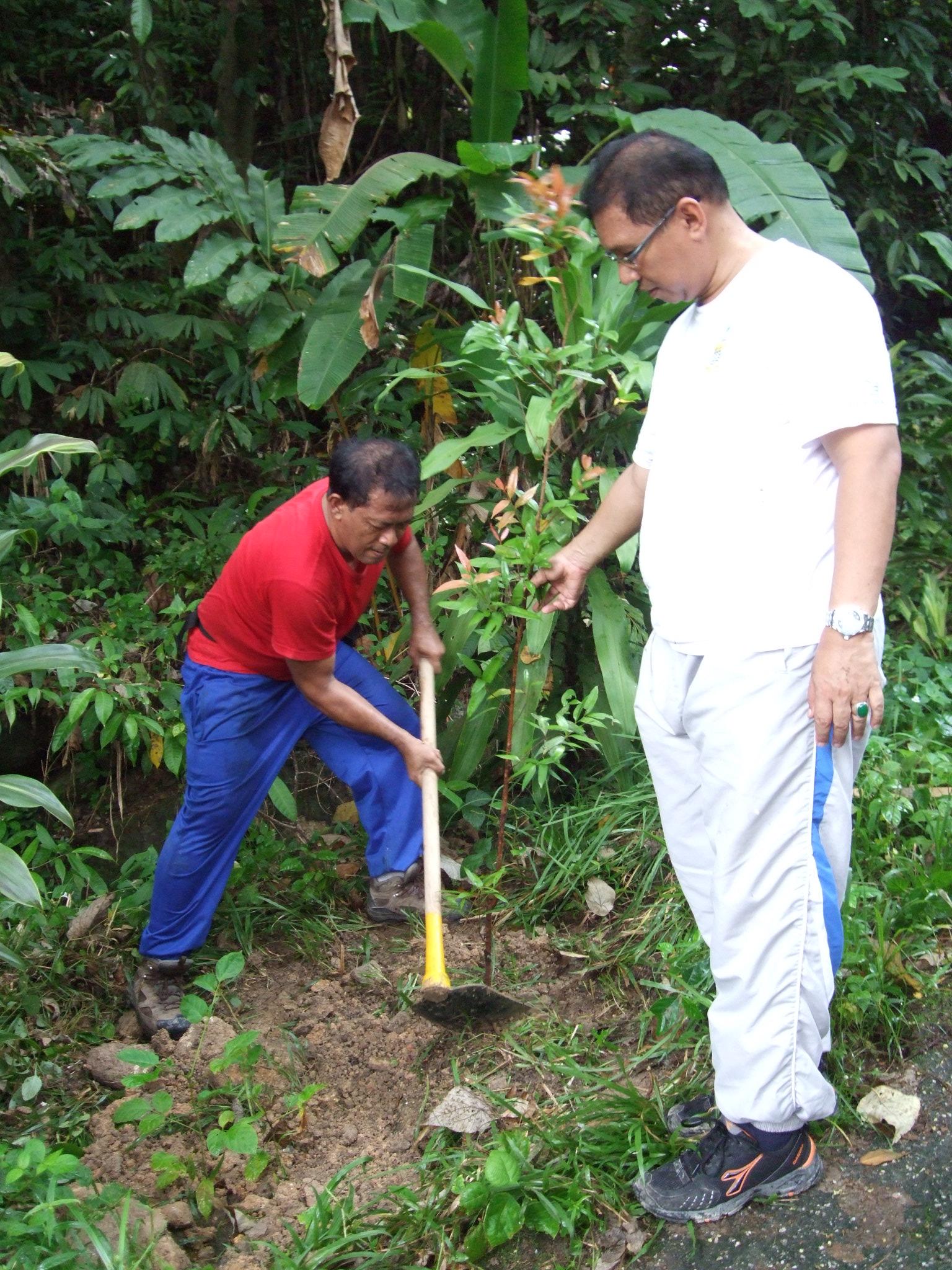 Program menanam pokok di kawasan mendaki Bukit Jambul