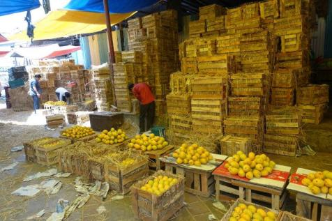 Crates and crates of mangoes on display