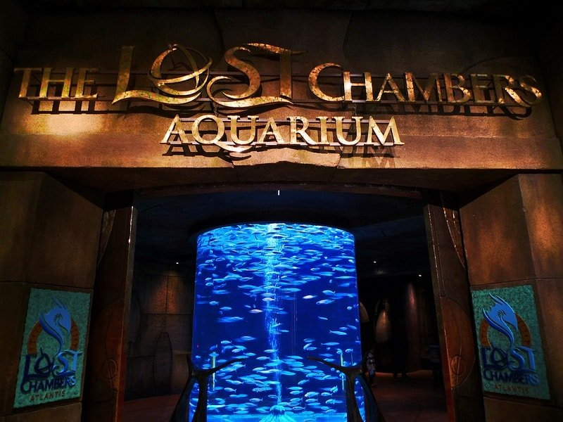Lost Chambers Aquarium Dubai and All of Middle East