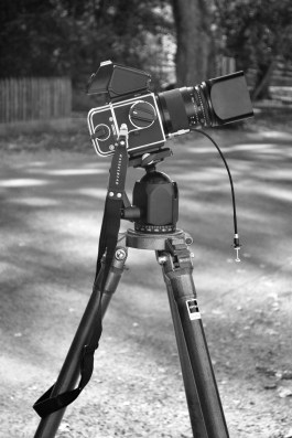 My professor's film camera