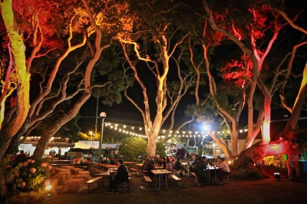 First City Festival - Photo by Tom Hoppa
