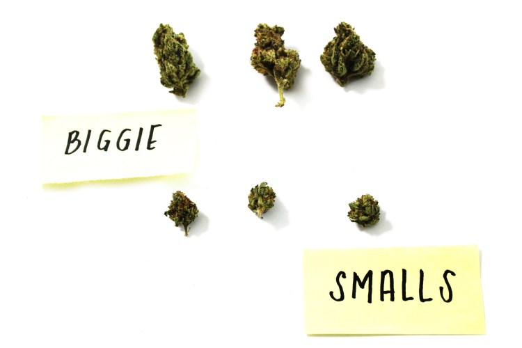 Biggie_Smalls_Insta