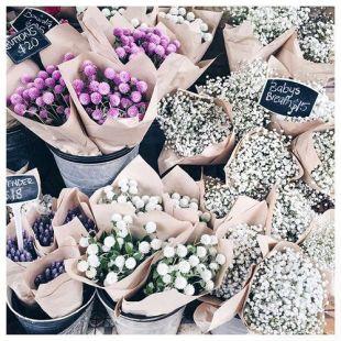 blomsteer
