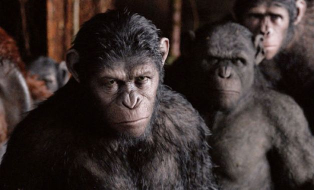 dawn-of-the-planet-of-the-apes-pictures