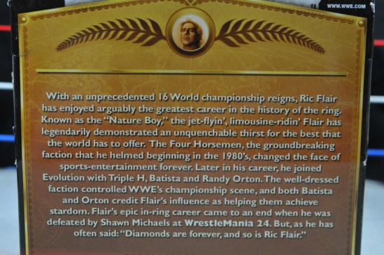 Ric Flair Defining Moments figure review - card back bio