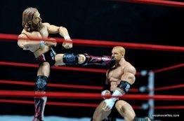 Daniel Bryan vs Triple H